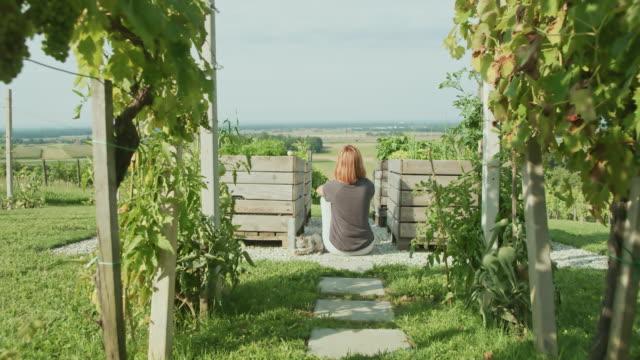 vídeos de stock e filmes b-roll de ws woman relaxing between wooden boxes in the garden - vinha