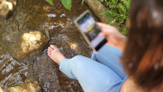 woman relaxing in nature and using phone , slow motion - transparent stock videos & royalty-free footage