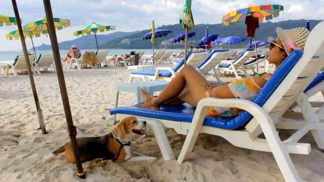 Woman relaxing on the beach with her dog