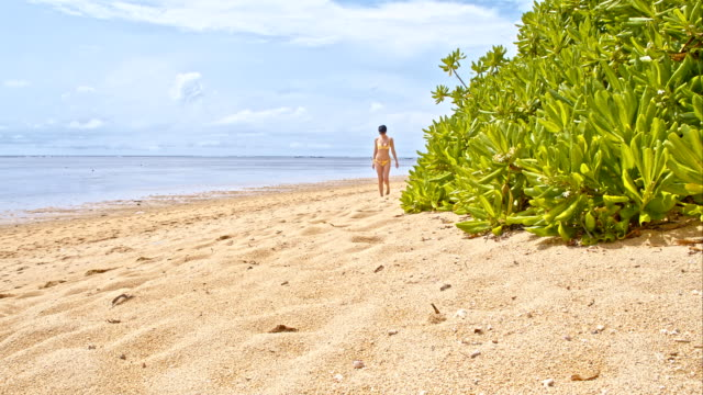 ws ds woman relaxing on the sanur beach - swimwear stock videos and b-roll footage