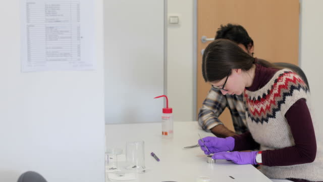 Woman Researcher Analyzing Scientific Sample while Student Watches Her
