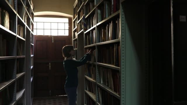 woman researching bookshelf - librarian stock videos & royalty-free footage