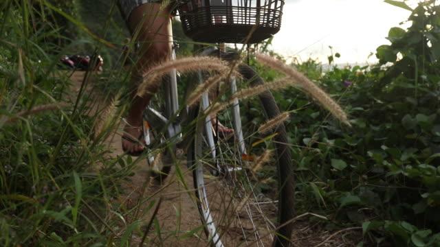 frau reitet fahrrad auf waldweg - eskapismus stock-videos und b-roll-filmmaterial