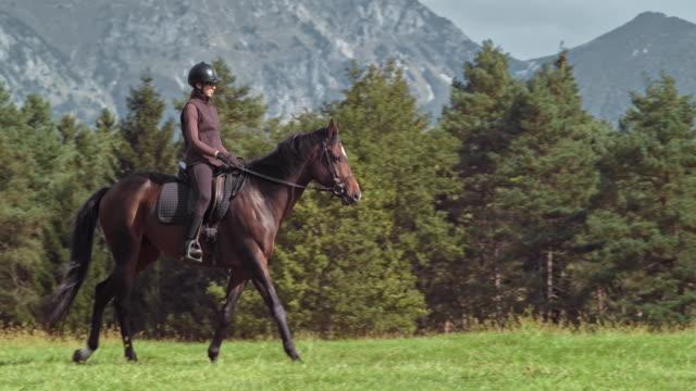 Vrouw een bruin paard rijden over een zonnige berg weide