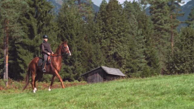 Vrouw een bruin paard rijden over berg grasland