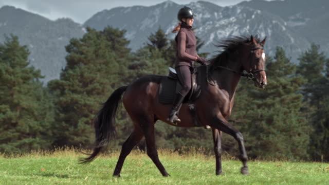 SLO MO vrouw een galopperend paard in een weide zonnige berg rijden