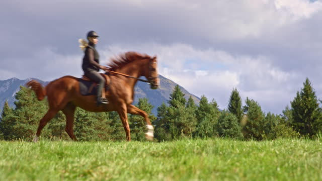 slo mo ds woman riding a galloping horse on mountain meadow - horseback riding stock videos & royalty-free footage