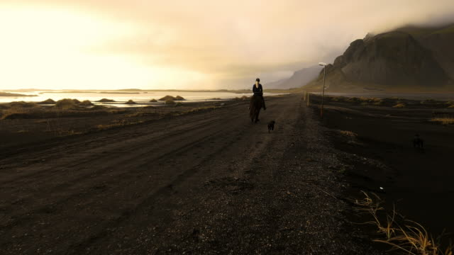 woman riding a horse along stokksnes beach - all horse riding stock videos and b-roll footage