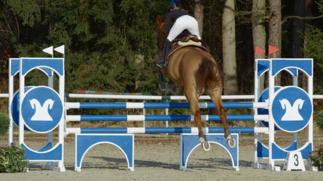 SLO MO Woman riding a horse jumping over an oxer