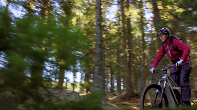 Woman riding a mountain bike through the forest in sunshine