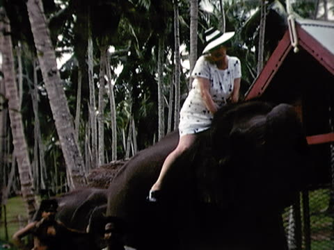 1939 ms woman riding elephant as trainer stands by/ sri lanka  - female with group of males stock videos and b-roll footage