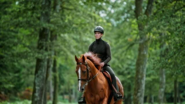 slo mo tu woman reitend galoppierendes braunes pferd durch den wald - galoppieren stock-videos und b-roll-filmmaterial