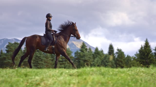 SLO MO TS Woman riding galloping horse across mountain meadow