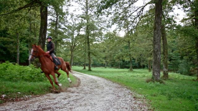 vídeos de stock, filmes e b-roll de mulher de cs que monta seu cavalo de galope através da floresta - cavalgar