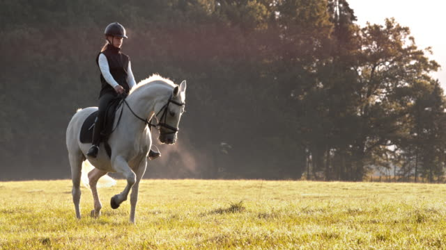 slo mo woman riding her white horse in meadow - saddle stock videos & royalty-free footage
