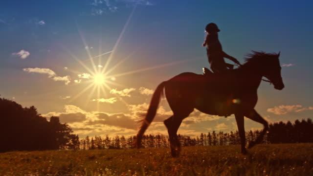 日没時に馬に乗る slo mo ds 女性 - 乗馬点の映像素材/bロール