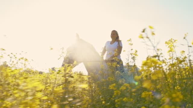slo mo woman riding horse in canola field - all horse riding stock videos and b-roll footage
