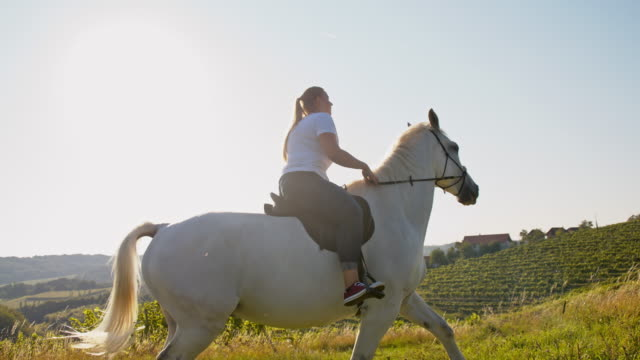 slo mo woman riding horse in meadow - one animal stock videos & royalty-free footage