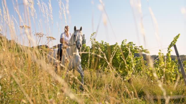 vidéos et rushes de femme au ralenti équitation cheval dans la prairie - selle