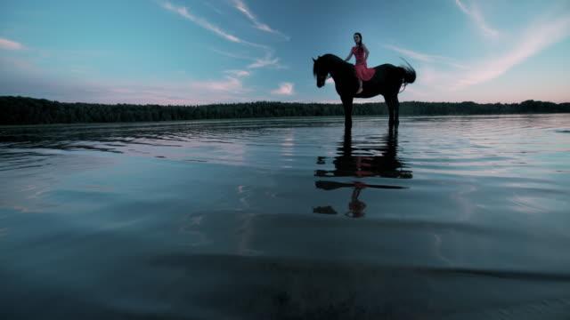 vídeos de stock e filmes b-roll de woman riding horse on beach - cavalgar