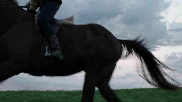 vídeos y material grabado en eventos de stock de woman riding horse on field against cloudy sky - herbívoro