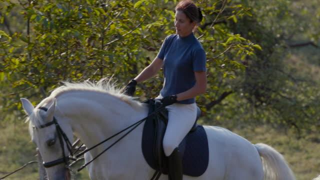 stockvideo's en b-roll-footage met vrouw rijdt paard op schuine terrein, opdrachten geven - alleen één mid volwassen vrouw