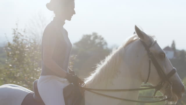 woman riding horse steadily in circle - horseback riding stock videos & royalty-free footage