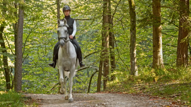 PAN Woman riding trotting white horse in forest
