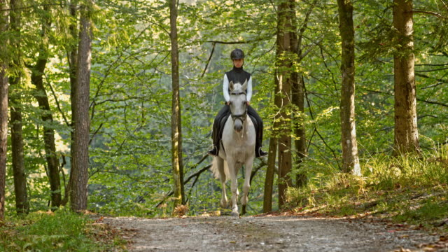 SLO MO TD Woman riding trotting white horse through forest