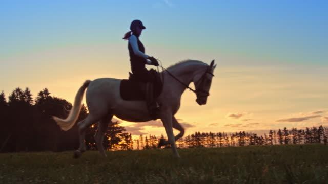 vidéos et rushes de slo mots femme équitation cheval blanc au crépuscule - équitation de loisir