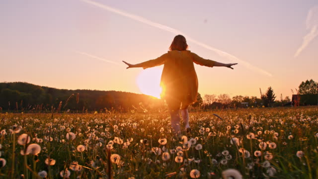 slo mo woman running across a meadow at sunset - piacere video stock e b–roll