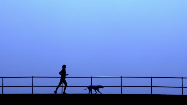 A woman running along a bridge with her pet dog.
