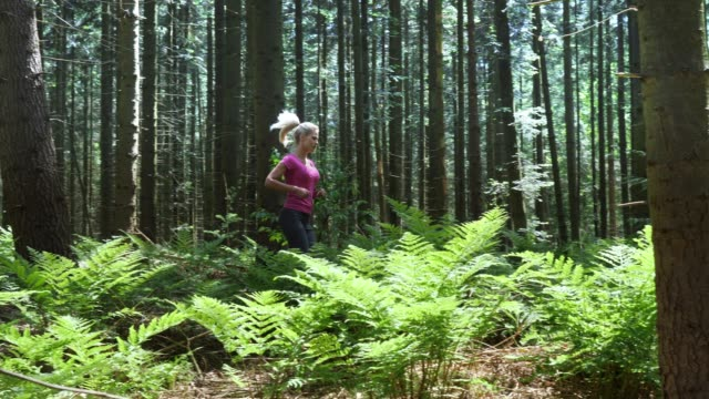 woman jogging in the forest - back lit woman stock videos & royalty-free footage