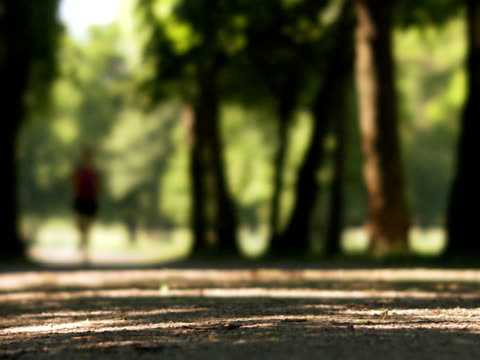 woman running in a park sweden. - joggerin stock-videos und b-roll-filmmaterial