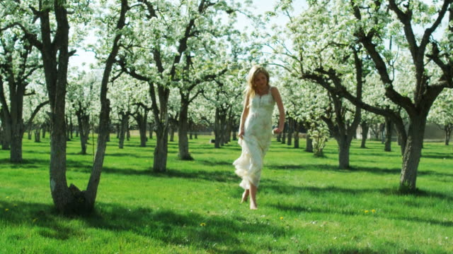 woman running in an orchard - one teenage girl only stock videos & royalty-free footage