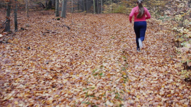 woman running in autumn. - one mid adult woman only stock videos & royalty-free footage