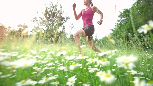 slo mo ts woman running in high grass - whole stock videos & royalty-free footage