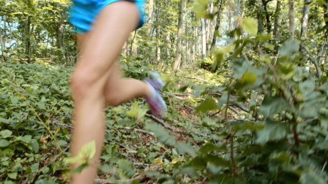 pan woman running in the forest - bush stock videos & royalty-free footage