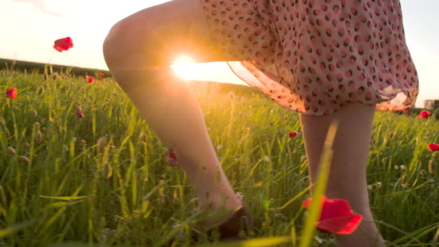 slo mo woman running in the grass at sunset - leg stock videos & royalty-free footage
