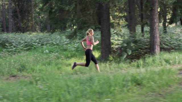 slo mo ds woman running on a forest trail in sunshine - side view stock videos & royalty-free footage