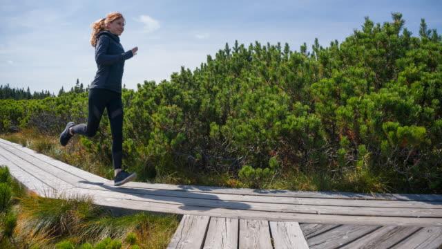 vídeos de stock e filmes b-roll de woman running on a wooden pathway among pine bushes - aproximar imagem