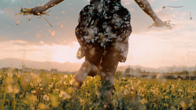slo mo woman running through a field of dandelions - scalzo video stock e b–roll