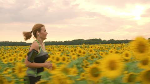 ts-frau läuft durch ein feld von sonnenblumen - herausforderung stock-videos und b-roll-filmmaterial