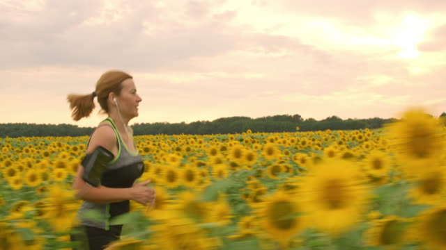ts woman running through a field of sunflowers - cross country running stock videos & royalty-free footage