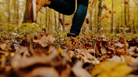 stockvideo's en b-roll-footage met de vrouw die van ms door de herfstbladeren in idyllisch bos loopt - autumn