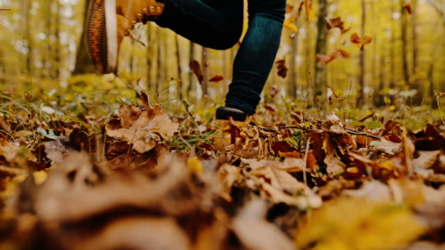 ms woman running through autumn leaves in idyllic forest - autumn stock videos & royalty-free footage