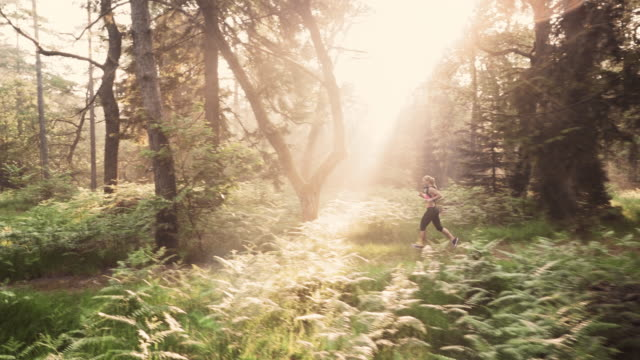 AERIAL Woman running through forest in morning sunshine