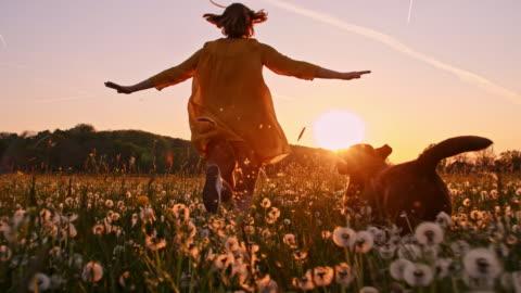 slo-mo-frau mit ihrem hund über eine wiese laufen bei sonnenuntergang - one person stock-videos und b-roll-filmmaterial