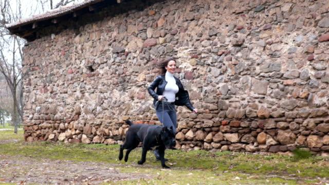 frau läuft mit neapolitanischem mastiff haustitelhund - haustierleine stock-videos und b-roll-filmmaterial