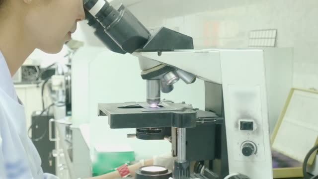 woman scientist technician with microscope in hospital laboratory - clinic stock videos and b-roll footage